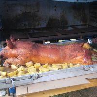 Un beau cochon