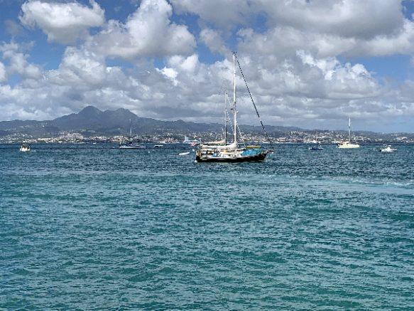 Voiliers Martinique - journal des citoyens