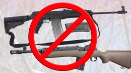 Journal des citoyens - armes à feu