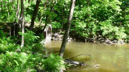 Environnement rivière - journal des citoyens